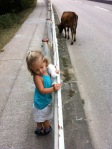 Girl and Cow by Fence