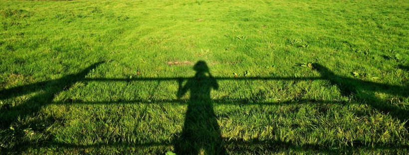Photo: shadow of a girl standing at a fence cast on grass in bright sunlight